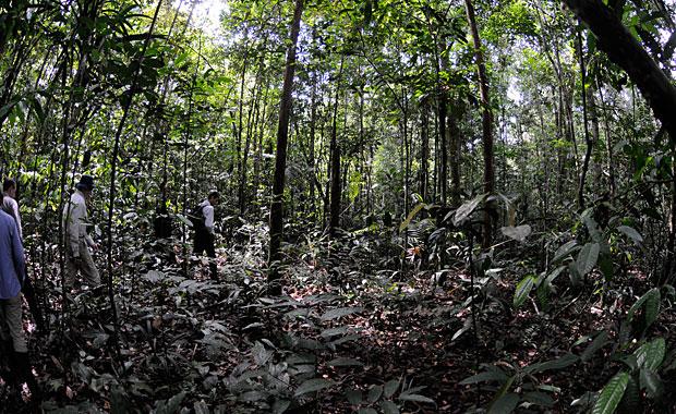 amazon-trek