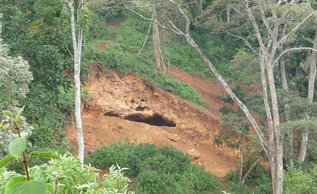 Elephant do dig caves