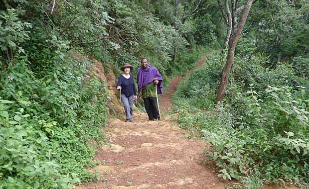 Elephant cave walk